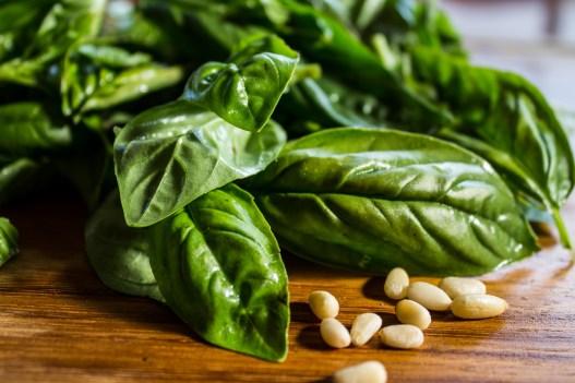 Basil and pine nuts for fresh pesto sauce. Dawn Page / CoastsideSlacking
