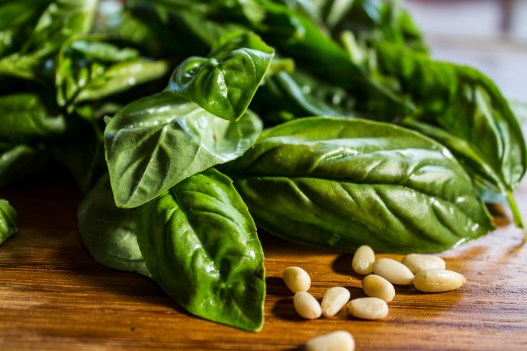 Basil and pine nuts for fresh pesto sauce. Dawn Page / CoastsideSlacking