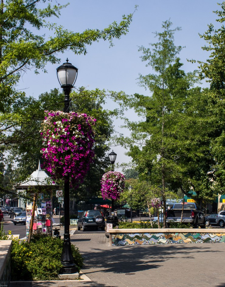 Lovely public square in Ashland, Oregon. PSA, don't drink the water! Dawn Page / CoastsideSlackers