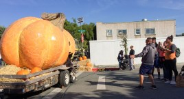 Pictures with the world largest glass pumpkin sculpture at the 2017 Half Moon Bay Pumpkin Festival. Dawn Page / CoastsideSlacking