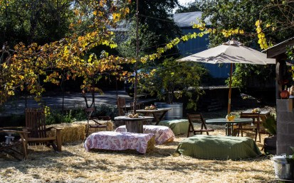 Fall in Sonoma -- Radio Coteau Vineyards. Dawn Page / CoastsideSlacking