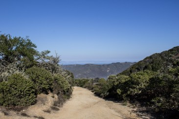 North Peak Access Road. Montara Mountain. Dawn Page / CoastsideSlacking