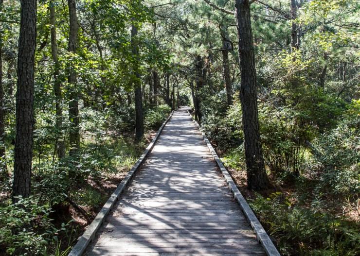 20180923 - hiking-IMG_0515