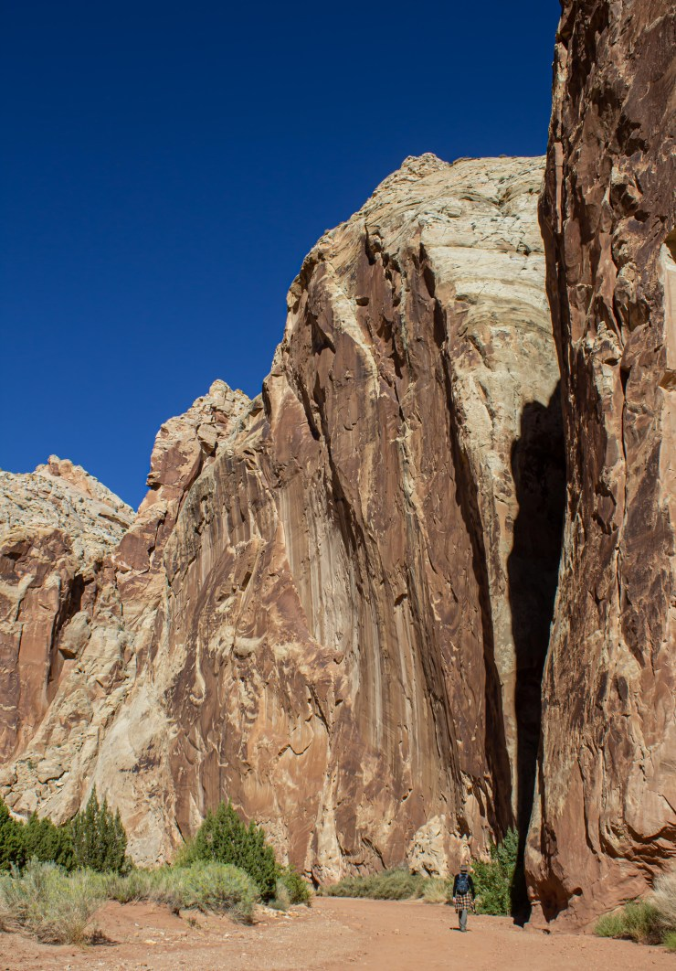20190925 - capitol reef-IMG_0457