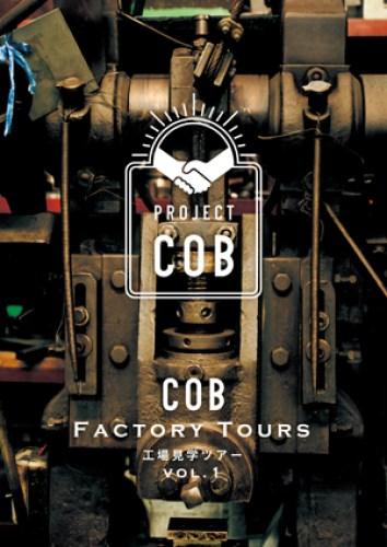 cob-project__1