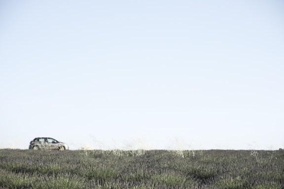 paca_valensole_lavender_fields_lavende_provence_car