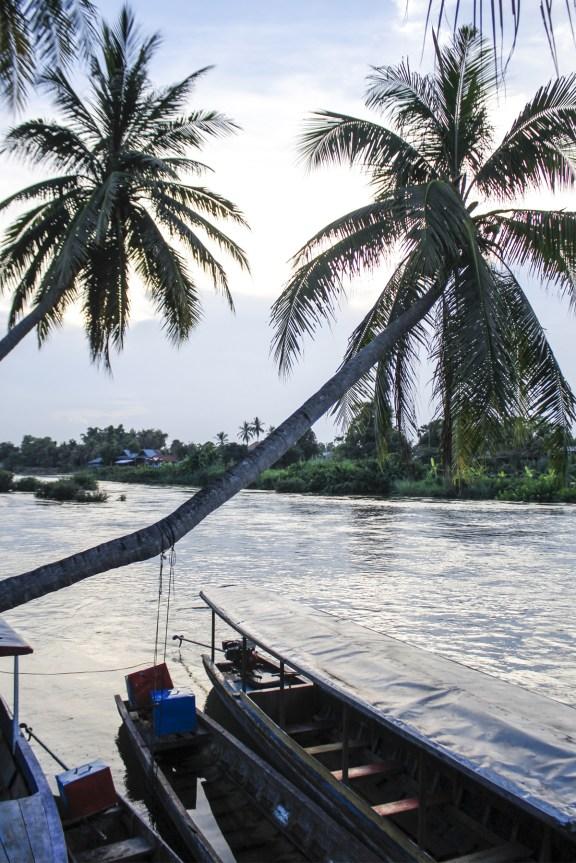 cobalt_state_laos_4000_islands_sunset_palm_tree