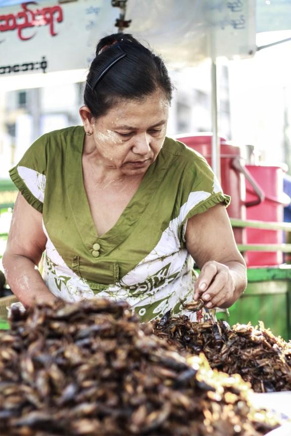 cobalt_state_myanmar_yangon_city_woman_market