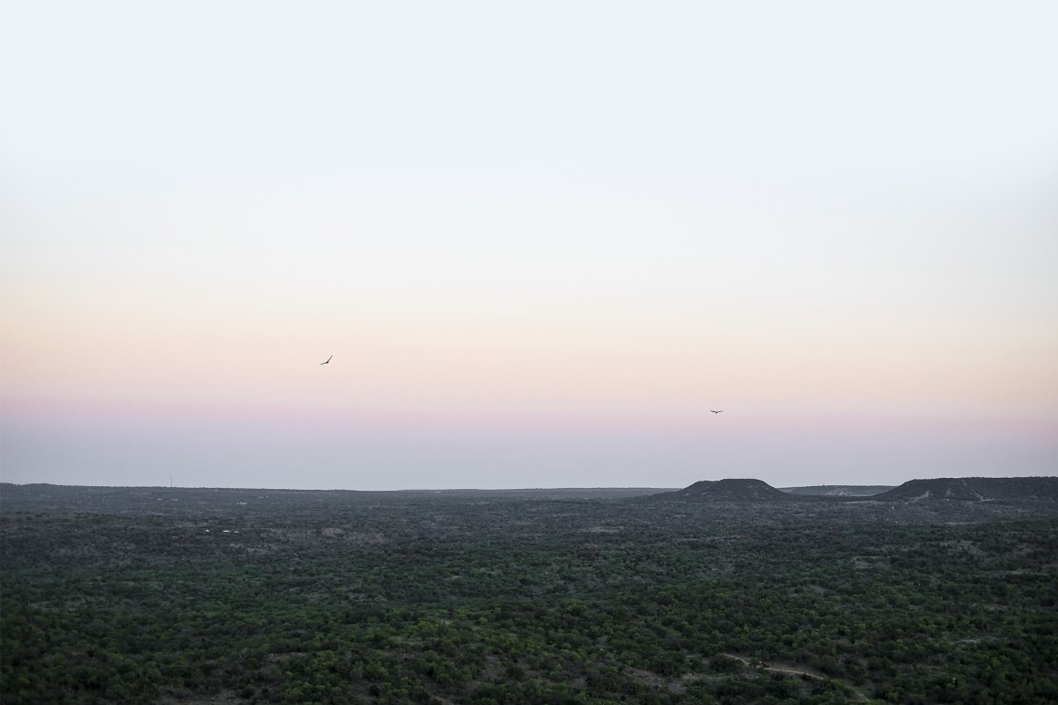 View of the forest from the top of Enchanted Rock at sunset