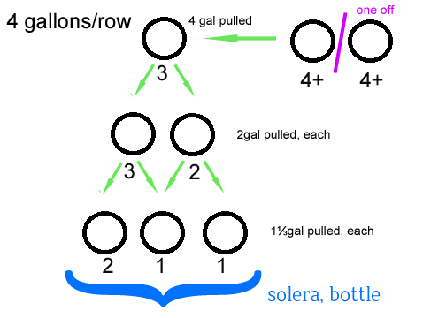 solera-visual2