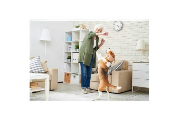 Giving Dog Treats
