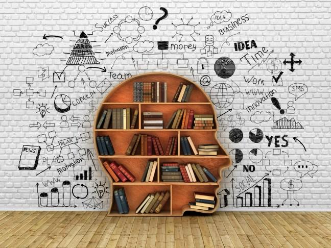Wood Bookshelf in the Shape of Human Head and books near break wall, Knowledge Concept