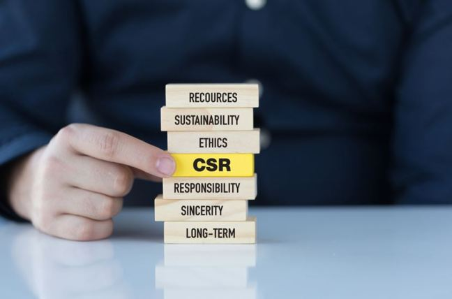 Understanding CSR at the Council on Business & Society, Trinity Business School, Tanusree Jain