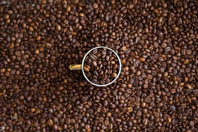 The farmer, who was born in the municipality of Patrocinio, Minas Gerais State, lives on his small 15-hectare farm, out of which 11 hectares are exclusively dedicated to coffee plantation. For over 40 years he's been supporting his family with the money he earns selling his production, and one of his major customers is Nespresso, from Nestlé Group.