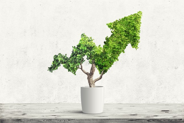 How to Make Environmental Policy Drive Business Innovation: Pedro Vormittag, FGV-EAESP Runner-up in the 2021 CoBS CSR article competition, sets the argument for environmental policy to drive business innovation – by giving companies a voice in influencing which regulation to put on the table in international climate negotiations.