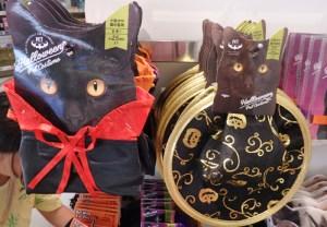 ハロウィン 衣装 犬 猫