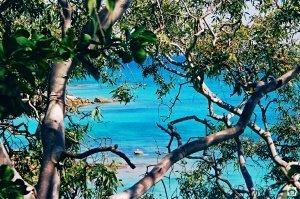 Lizard Island cosa vedere