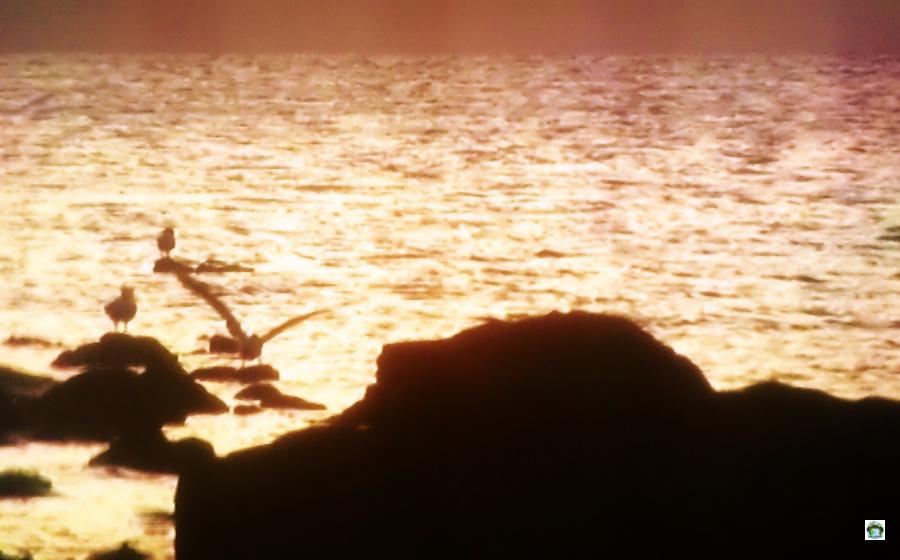 Ongea Island tramonto