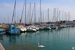 porto di Desenzano - Cocco on the road