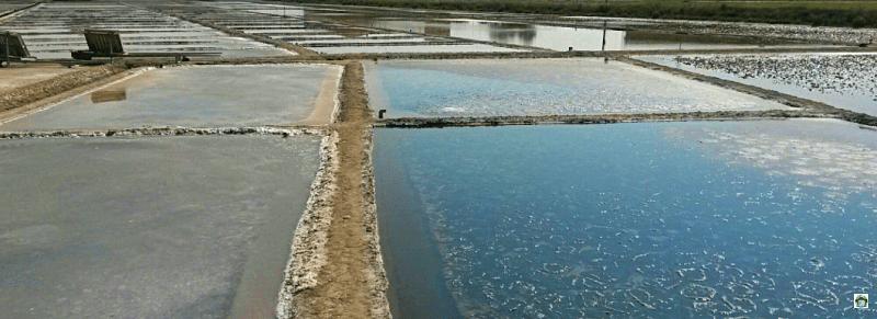 Vasche sale di Cervia