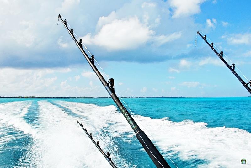 Pesca d'altura a Bora Bora