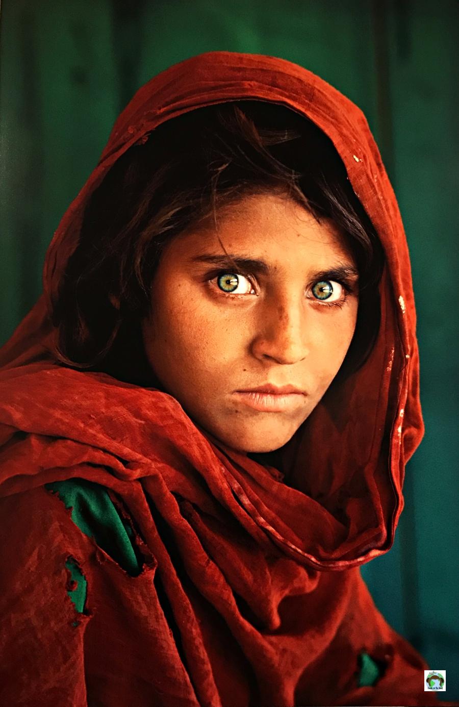 La Ragazza Afghana di Steve McCurry