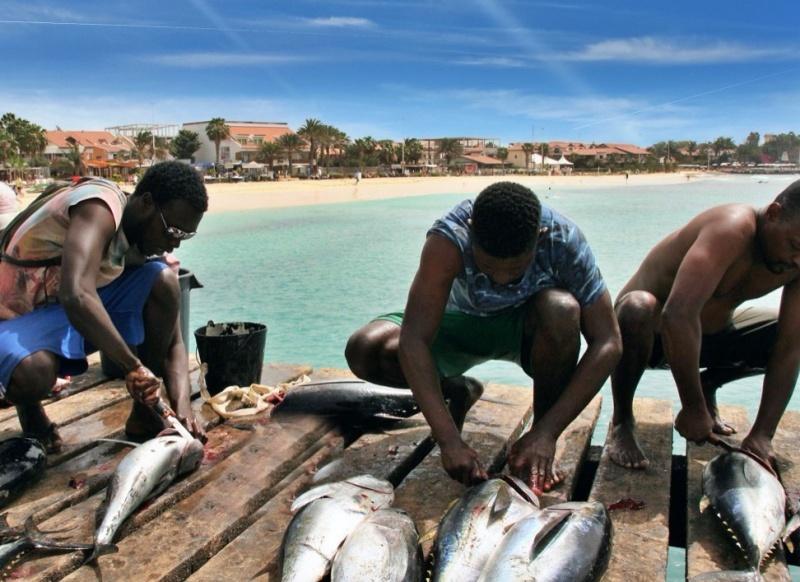 pescatori che puliscono il pesce isola di sal