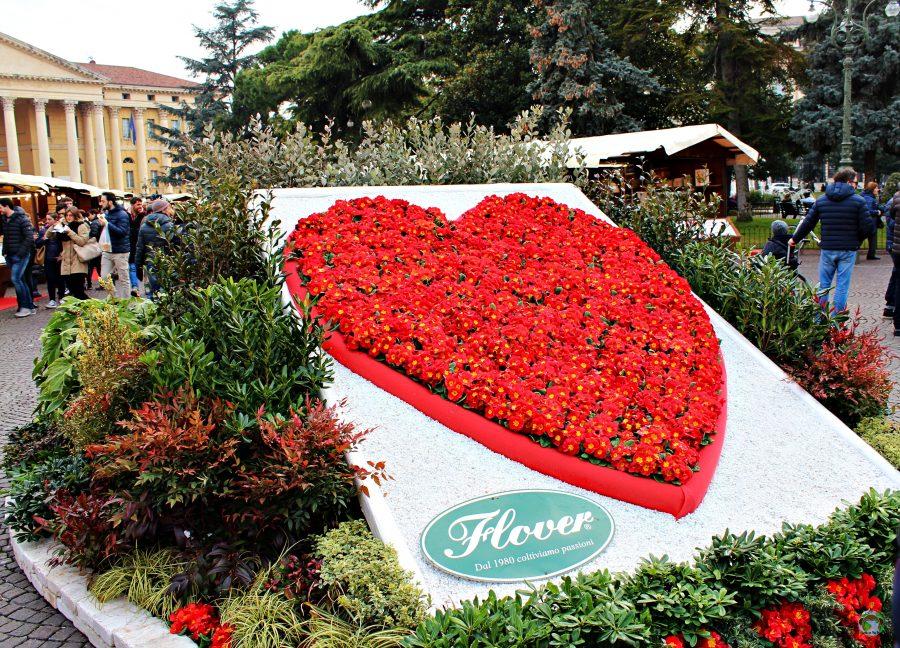 Cuore di fiori Verona in love - Cocco on the road