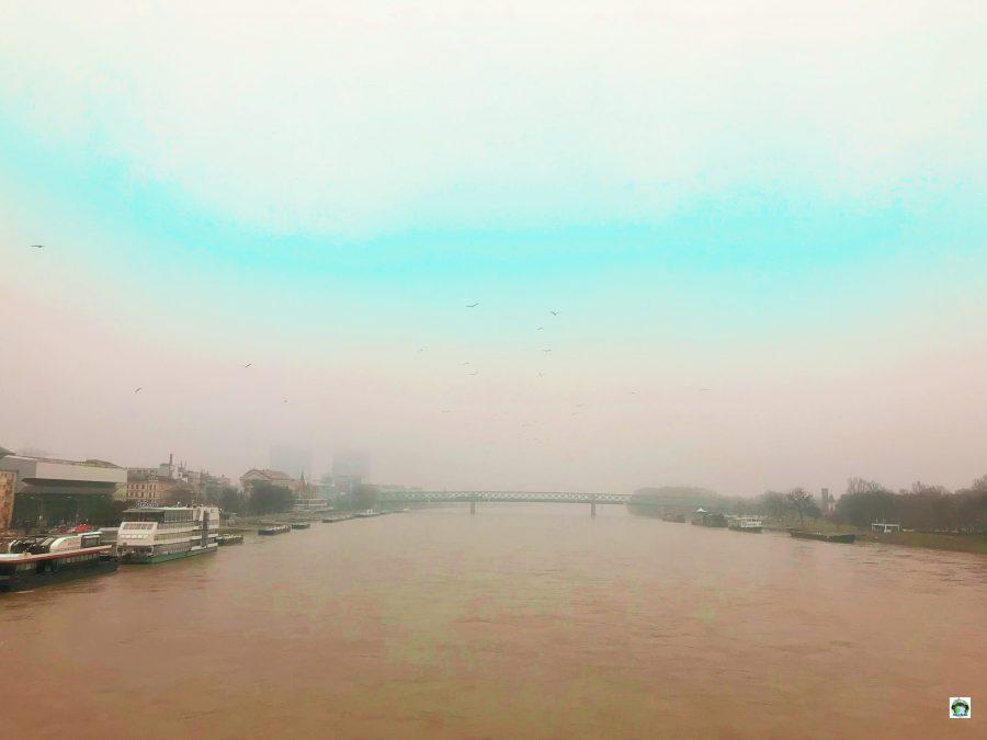Il Danubio a Bratislava - Cocco on the road