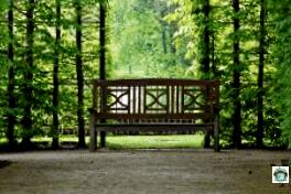 Il giardino dei veleni di Alnwick