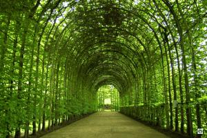 Il giardino del Castello di Alnwick