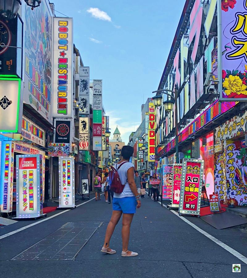 Cosa vedere a Tokyo KabukiCho
