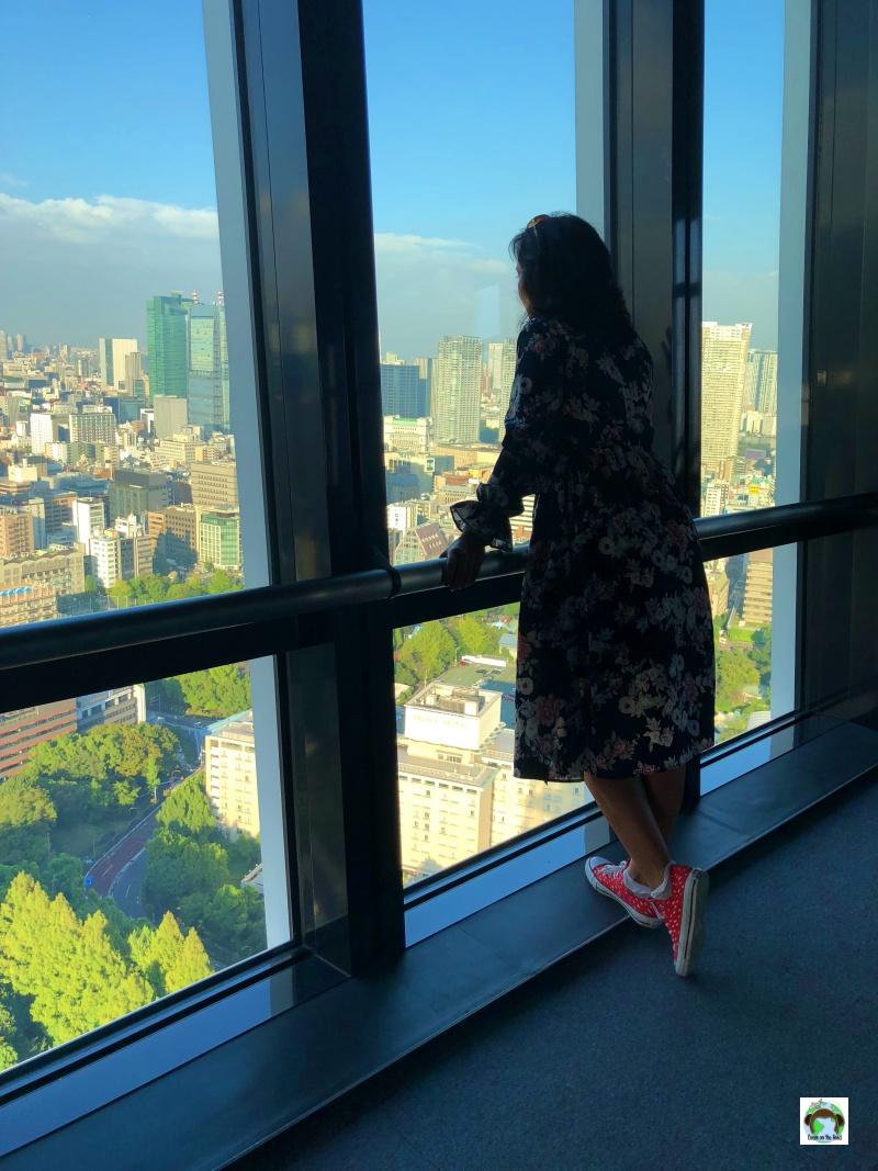 Cosa vedere in Giappone Panorama dalla Tokyo Tower