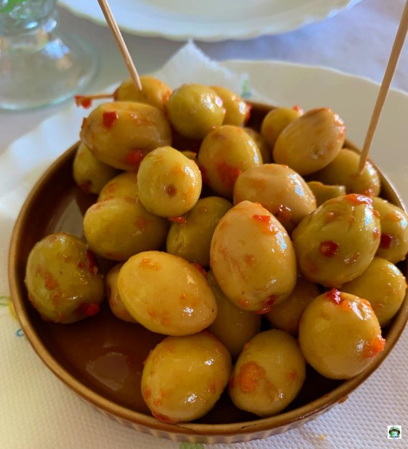 olive Marocco