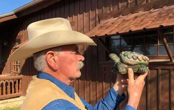 Talking with a Red Eared Mud Slider