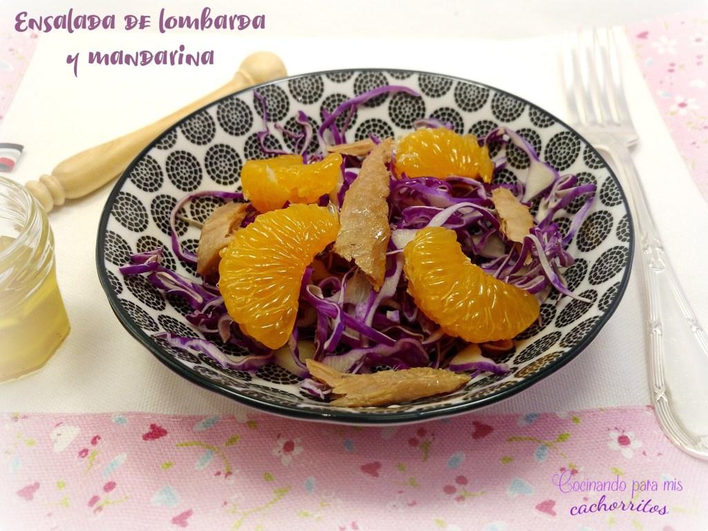 ensalada de lombarda y mandarina