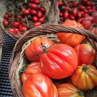 Alimentos del verano, que comer cuando llega el calor