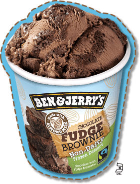 Chocolate Fudge Brownie Non-Dairy Frozen Dessert Pint