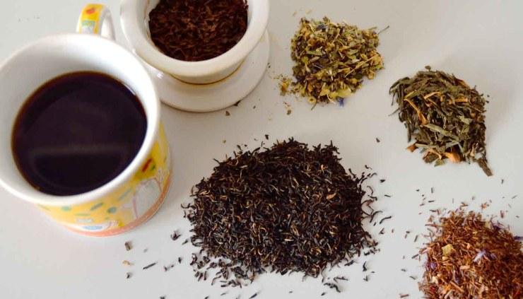 Tipos de tés y sus propiedades