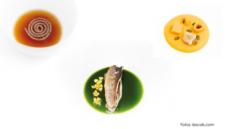 Fina Puigdevall, biografía de la chef y su restaurante Les Cols