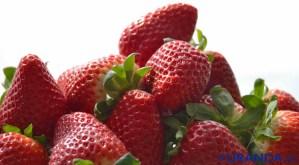 Calendario de frutas y verduras de temporada por meses - fresas
