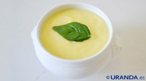 receta de vichysoisse vegana co crema de puerros frías - recetas vegetarianas y veganas - recetas de sopas y cremas frías