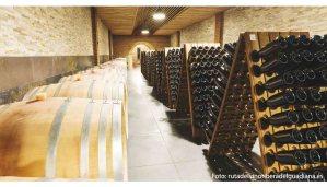 Denominación de origen Ribera del Guadiana, vino en tierra de dehesas - vinos de España - vinos de Extremadura