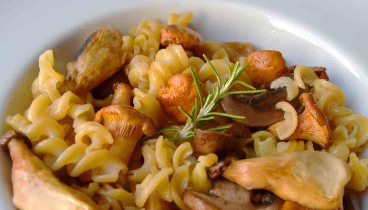 Receta de pasta de lentejas al romero con setas variadas - recetas de pasta sin gluten - recetas vegetarianas y veganas