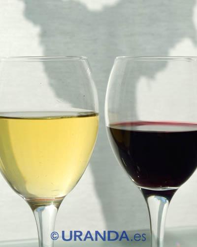 ¿Todos los vinos son veganos? - alimentación vegana