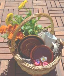 cocina y recetas de primavera - Cocineando.com