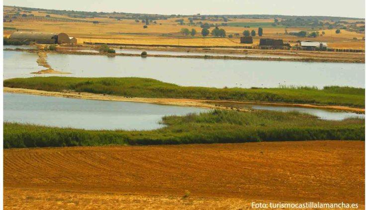 Ruta del vino de Almansa - vinos de España - Enoturismo en Castilla La Mancha