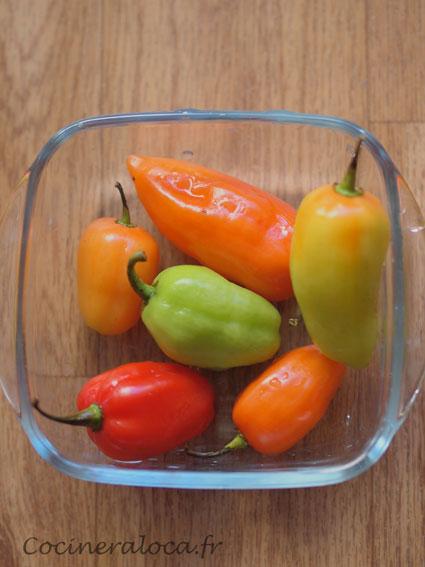 t piment végétarien ©cocineraloca.fr