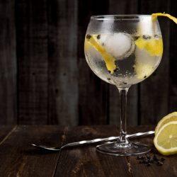 琴通寧 gin tonic