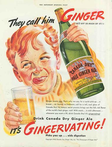 薑汁汽水調酒 -Canada Dry